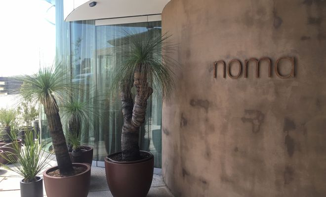 What it was like dining at NOMA's 10-week pop-up in Sydney.